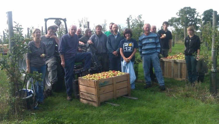 apples sept 2013