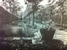An early planting scheme. Copyright Adam Nicolson.
