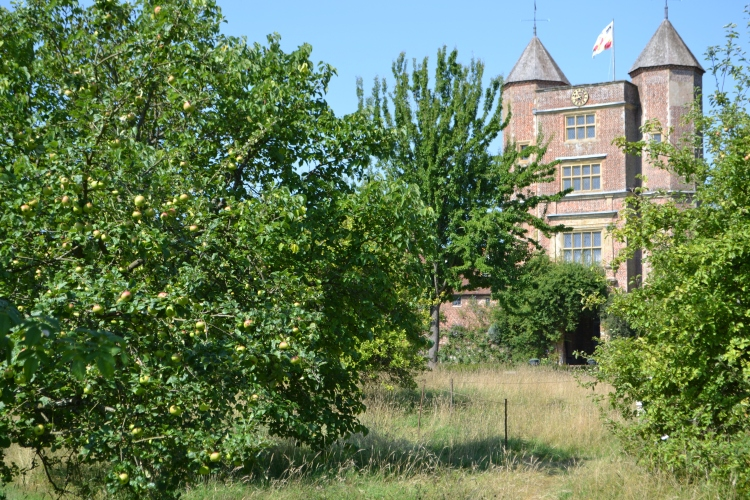 The orchard and the tower