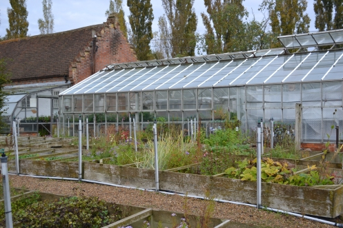 The main glasshouse.