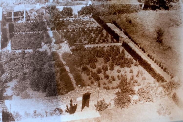 The rose garden 1937