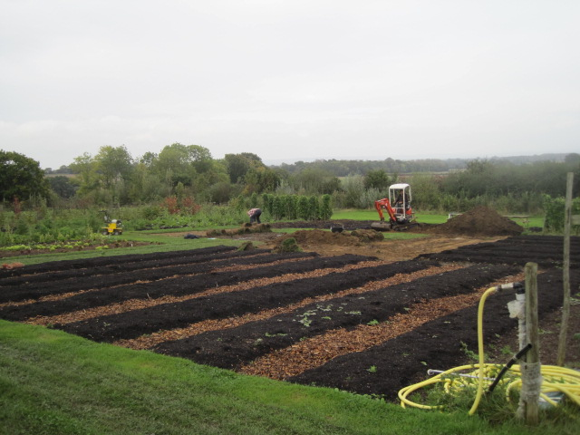 Big changes in the Vegetable Garden