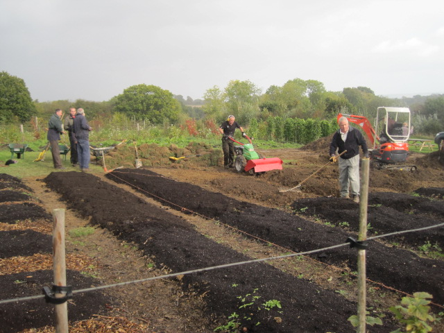 Big changes in the Vegetable Plot.