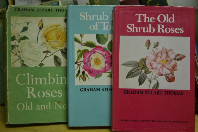 Rose books by Graham Stuart-Thomas