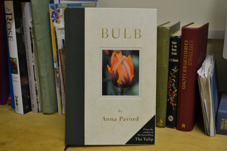 Bulb by Anna Pavord