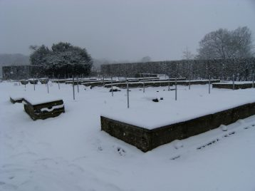 Cold frames in snow 2012