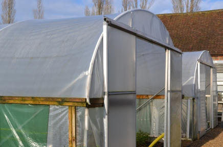 The polytunnel exterior