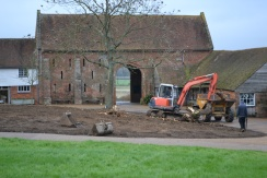 Removal of trees from the oast meadow
