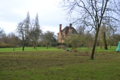 The lower orchard with thatch being removed.
