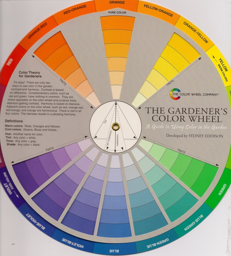 A gardener's colour wheel