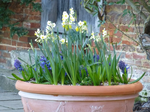 Spring display in the Top Courtyard.