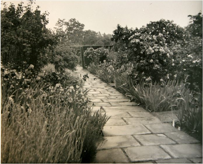 An early photo of the Rose Garden