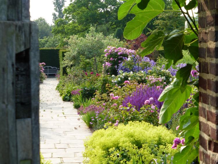 The Rose Garden 2014