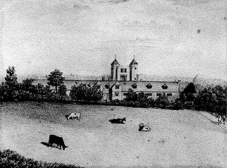 Cows in front of the castle in 1761 on the field that is now known as the Plain
