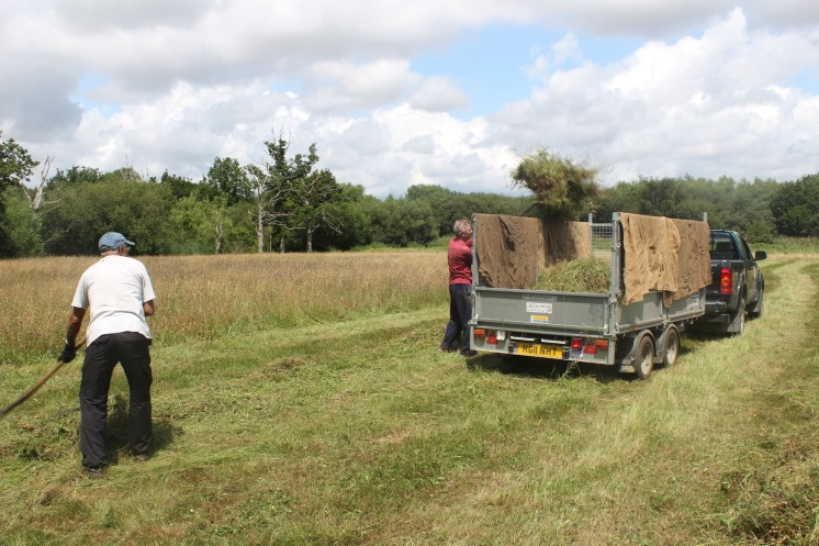 Loading the hay.