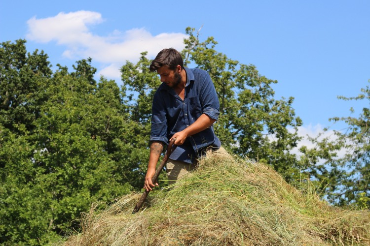 Making the haystack 11