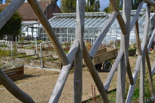 Views of the glasshouse and plant propergation area.