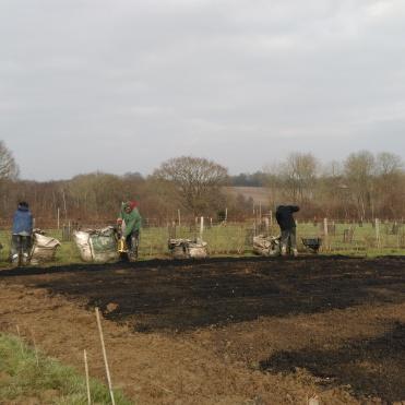 Volunteers busy mulching beds