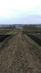 A sticky soil situation shows how bad it can get on the plot during winter