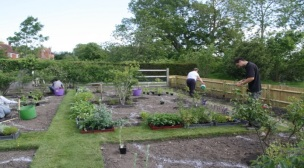 Planting in May