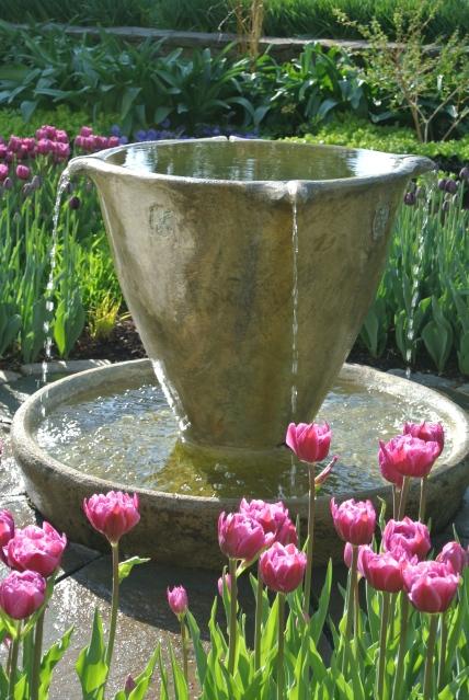 The Teacup Garden